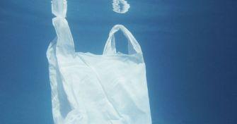Mikroplastik: Schädlich für Gewässer und ihre Bewohner – und auch für den Menschen? | apomio Gesundheitsblog