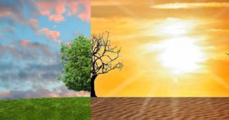 Nicht nur die Umwelt leidet: Wie der Klimawandel unsere Gesundheit gefährdet