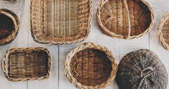 Kräuter sammeln – Tipps für Einsteiger | apomio Gesundheitsblog
