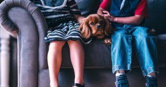 Tierhaarallergie - was nun? | apomio Gesundheitsblog