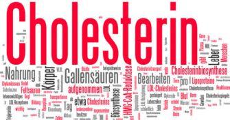 Cholesterin: Fluch oder Segen? | apomio Gesundheitsblog
