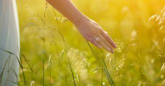 Hilfe bei Heuschnupfen durch Hypnose und Entspannungstechniken | apomio Gesundheitsblog