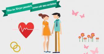 Die Macht der Hormone - Wie die Liebe funktioniert