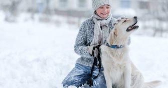 Achtung: Winter für Vierbeiner - Pfoten schützen