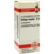 USTILAGO MAYDIS D12 günstig im Preisvergleich