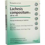 Lachesis compositum N ad us.vet. günstig im Preisvergleich