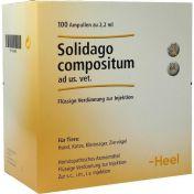 Solidago compositum ad us.vet. Ampullen