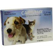 Capstar 11.4mg für Katzen und kleine Hunde Tabletten