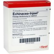Echinacea Injeel