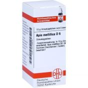 APIS MELLIFICA D 6