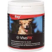VivoBay VivoFit Hund vet