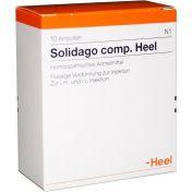 Solidago comp. Heel günstig im Preisvergleich