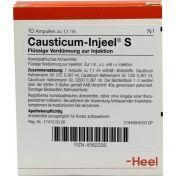 CAUSTICUM INJEEL S