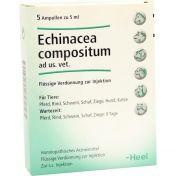 Echinacea compositum ad us. Ampullen vet.
