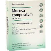 Mucosa Comp. Ampullen vet.