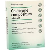 Coenzyme comp. Ampullen vet. günstig im Preisvergleich