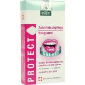 Bader's Protect Zahnfleischpflege