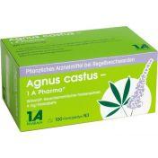Agnus castus - 1 A Pharma