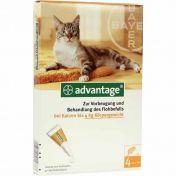 Advantage 40 Katze bis 4 kg Einzeldosierpipetten vet.