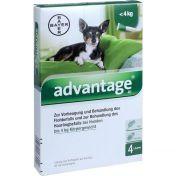 Advantage 40 Hund Einzeldosierpipetten vet. günstig im Preisvergleich