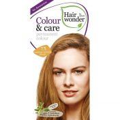 Hairwonder Colour & care Med.Golden Blond 7.3 günstig im Preisvergleich