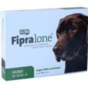 Fipralone für große Hunde Lösung