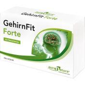 GehirnFit Forte
