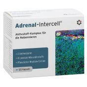 Adrenal-Intercell günstig im Preisvergleich