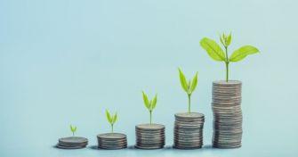 Globaler Trend Nachhaltigkeit: Wie stellen E-Commerce-Unternehmen die Weichen?